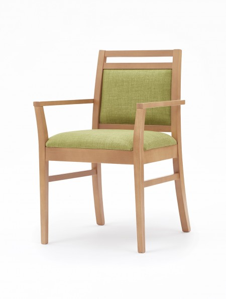 Dazio arm dining chair
