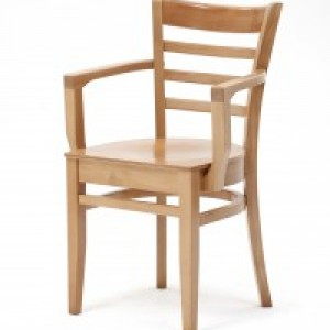 Care Home Chairs For The Dining Room - New St Neots Model With Arms
