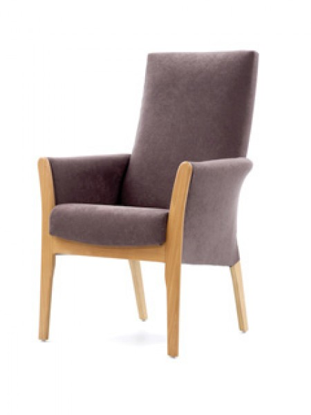 Mexborough lounge chair